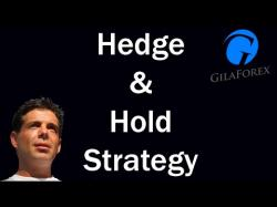 Binary Option Tutorials - 365 Trading Strategy Hedge and Hold Forex Trading Strate