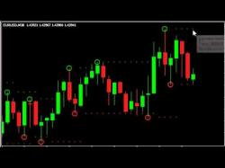 Binary Option Tutorials - Binary Dealer Video Course Lesson 06 Fractal