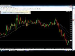 Forex 365 institute reviews