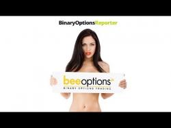 Binary Option Tutorials - Bee Options Review beeoptions review - save time and m