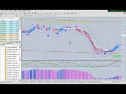 Binary Option Tutorials - TrendOption Video Course Cynthia's Color Coded Trend Trading