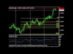 Binary Option Tutorials - forex scalper 5 Cara mudah belajar Trading forex